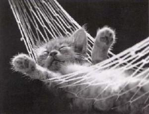 Искам почивка